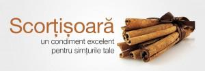 sapunnatural-scortisoara_slider