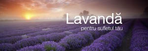 sapunnatural-lavanda_slider